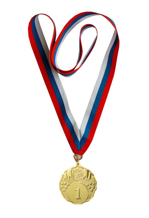 Мои первые победы медаль 451